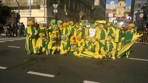 pustni karneval reka 04