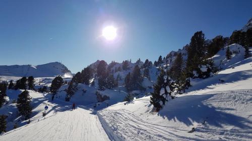 ski open dolomiti 12